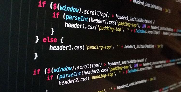 Professional Website Maintenance